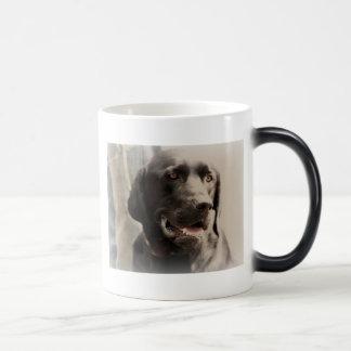 Beautiful Black Labrador Retriever Portrait Magic Mug