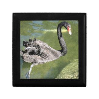 Beautiful Black Swan Jewelry/Gift Box