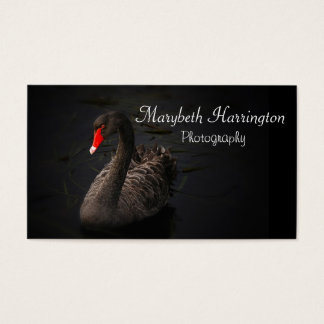 Beautiful Black Swan with a Bright Red Beak Business Card