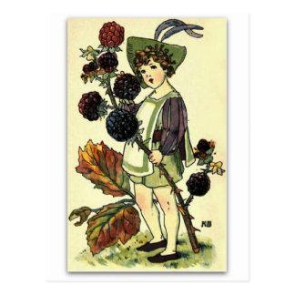 Beautiful Blackberry by NELLIE BENSON Postcard