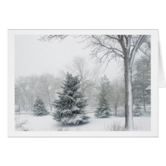 Beautiful Blizzard Greeting Cards