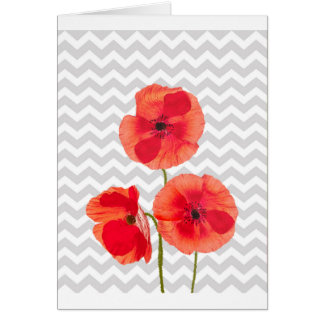 Beautiful blooming red poppies over grey chevron card