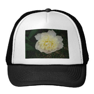 Beautiful Blooming Spring Flower Trucker Hat