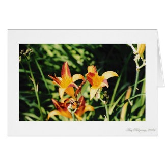 Beautiful Blooms 1 Card
