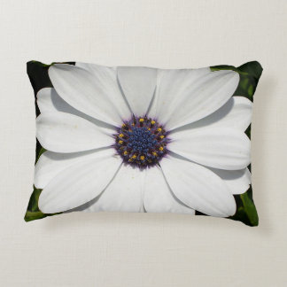 Beautiful Blossoming White Osteospermum Accent Pillow