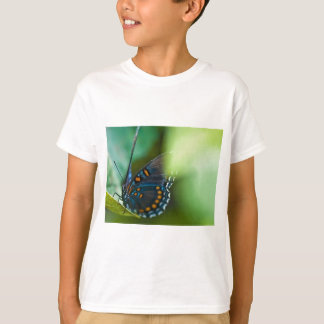 Beautiful Blue and Orange Butterfly T-Shirt