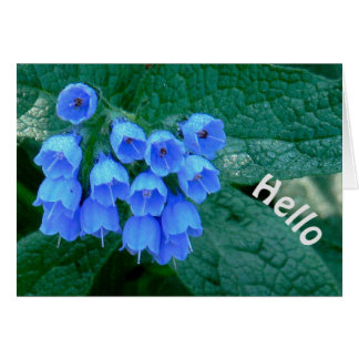 """Beautiful Blue Bell--Shaped Flowers, """"HELLO"""" CARD"""