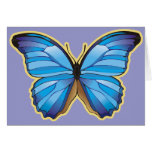 Beautiful Blue Butterfly Cards