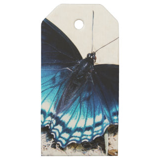 Beautiful Blue Butterfly Wooden Gift Tags