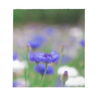 Beautiful blue cornflower products - greeting card notepad