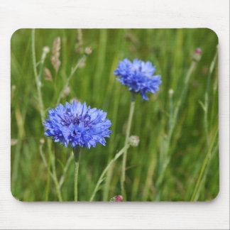 Beautiful Blue Cornflowers meadow flower design Mouse Pad