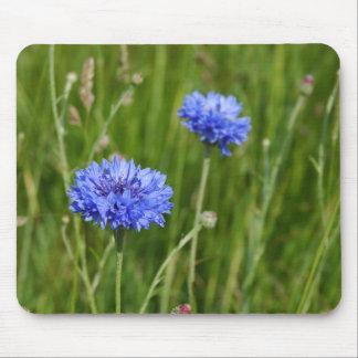 Beautiful Blue Cornflowers meadow flower design Mouse Pad