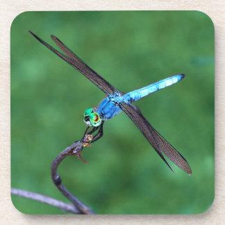 Beautiful Blue Dragonfly Photo Coaster