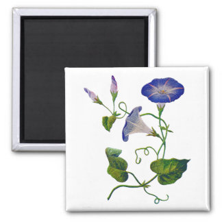 Beautiful Blue Embroidered Morning Glories 2 Inch Square Magnet