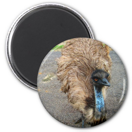 Beautiful Blue Emu Bird Photograph Magnet