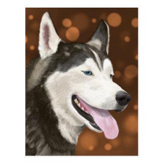 Beautiful Blue Eyed Husky, Brown Bokeh Background Postcard