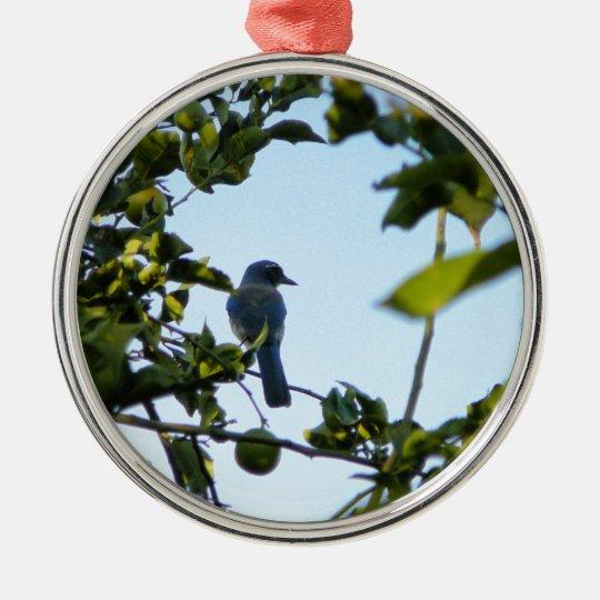 Beautiful Blue Jay Bird Metal Ornament