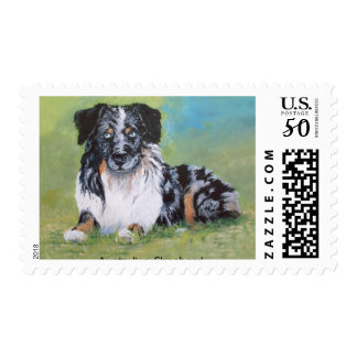 Beautiful Blue Merle Australian Shepherd! Postage