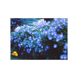 Beautiful Blue Morning Glory Flowers Canvas Print