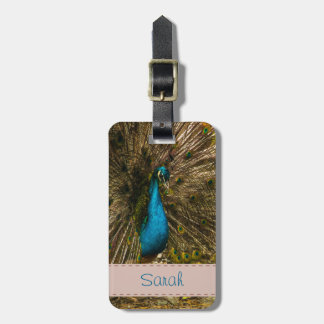 Beautiful Blue Peacock with Open Tail Feathers Bag Tag