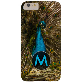Beautiful Blue Peacock with Open Tail Feathers Barely There iPhone 6 Plus Case