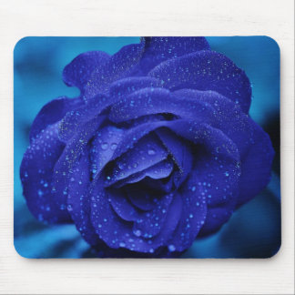 Beautiful blue rose mouse pads