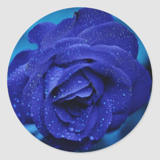 Beautiful Blue Rose Sticker