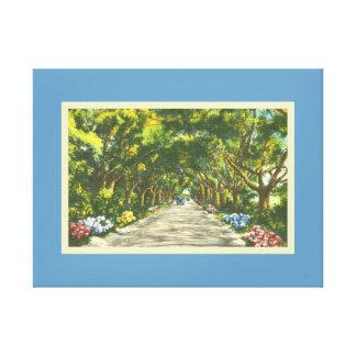 Beautiful Blue Scenic Road Largo Florida Canvas Print
