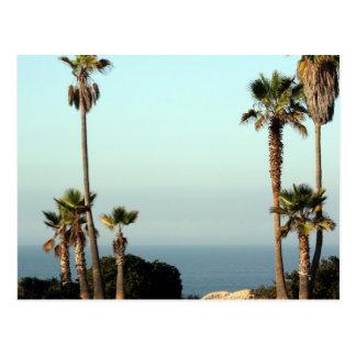 Beautiful Blue Skies Postcard