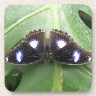 Beautiful Blue Spotted Butterfly Cork Coasters