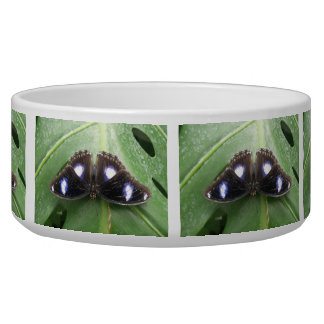 Beautiful Blue Spotted Butterfly Dog Bowl