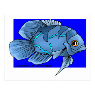 Beautiful Blue Tropical Oscar Fish Postcard