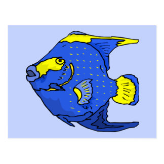 Beautiful Blue Tropical Parrot Fish Post Cards