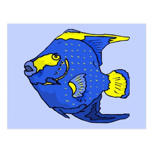 Beautiful Blue Tropical Parrot Fish Postcard