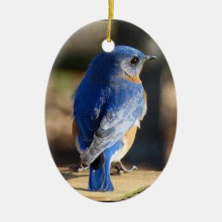 Beautiful Bluebird Double-Sided Oval Ceramic Christmas Ornament