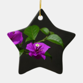 Beautiful bougainvillea flower Double-Sided star ceramic christmas ornament