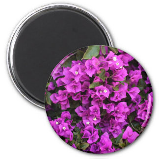Beautiful Bougainvillea Fridge Magnet