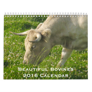 Beautiful Bovines 12 Month Calendar for 2016