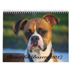 Beautiful Boxers 2017 Calendar at Zazzle