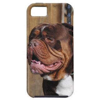 beautiful breed dog renascence bulldog iPhone SE/5/5s case