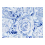 Beautiful Bride in Blue, Rose Bouquet, template Postcard