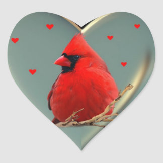 Beautiful Bright Red Cardinal, A sticker to deligh