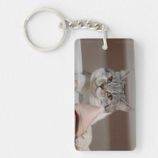 Beautiful British Shorthair Tomcat Keychain