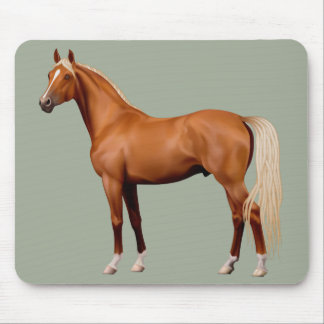 Beautiful brown animated horse mouse pad