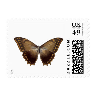 Beautiful Brown Butterfly Moth Botanical Stamps
