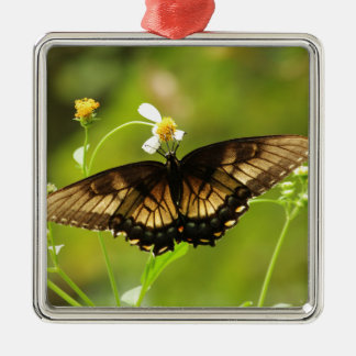 Beautiful Brown Butterfly Square Metal Christmas Ornament