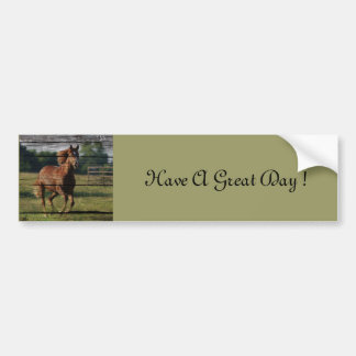 Beautiful brown colored horse running in field car bumper sticker