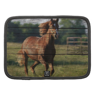 Beautiful brown colored horse running in field planner