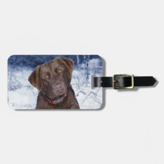 Beautiful Brown Dog Design Bag Tag