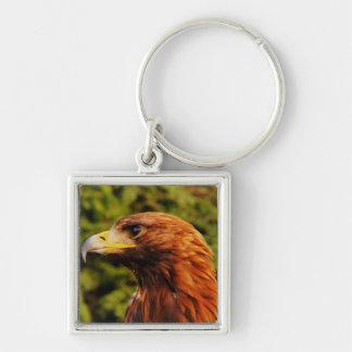 Beautiful brown eagle portrait keychain